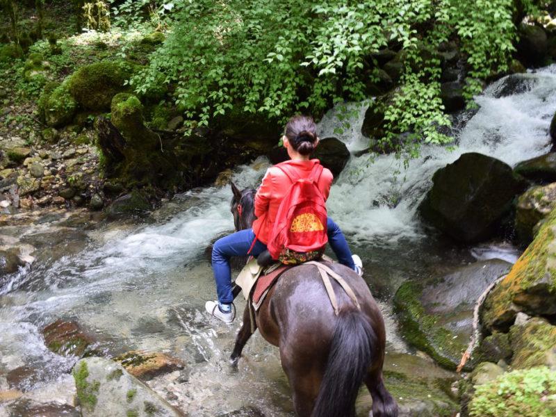Тур «Водная Ривьера», Адыгея. из Краснодара. «Л-Тур», Севастополь.